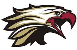 moreton bay raptors logo