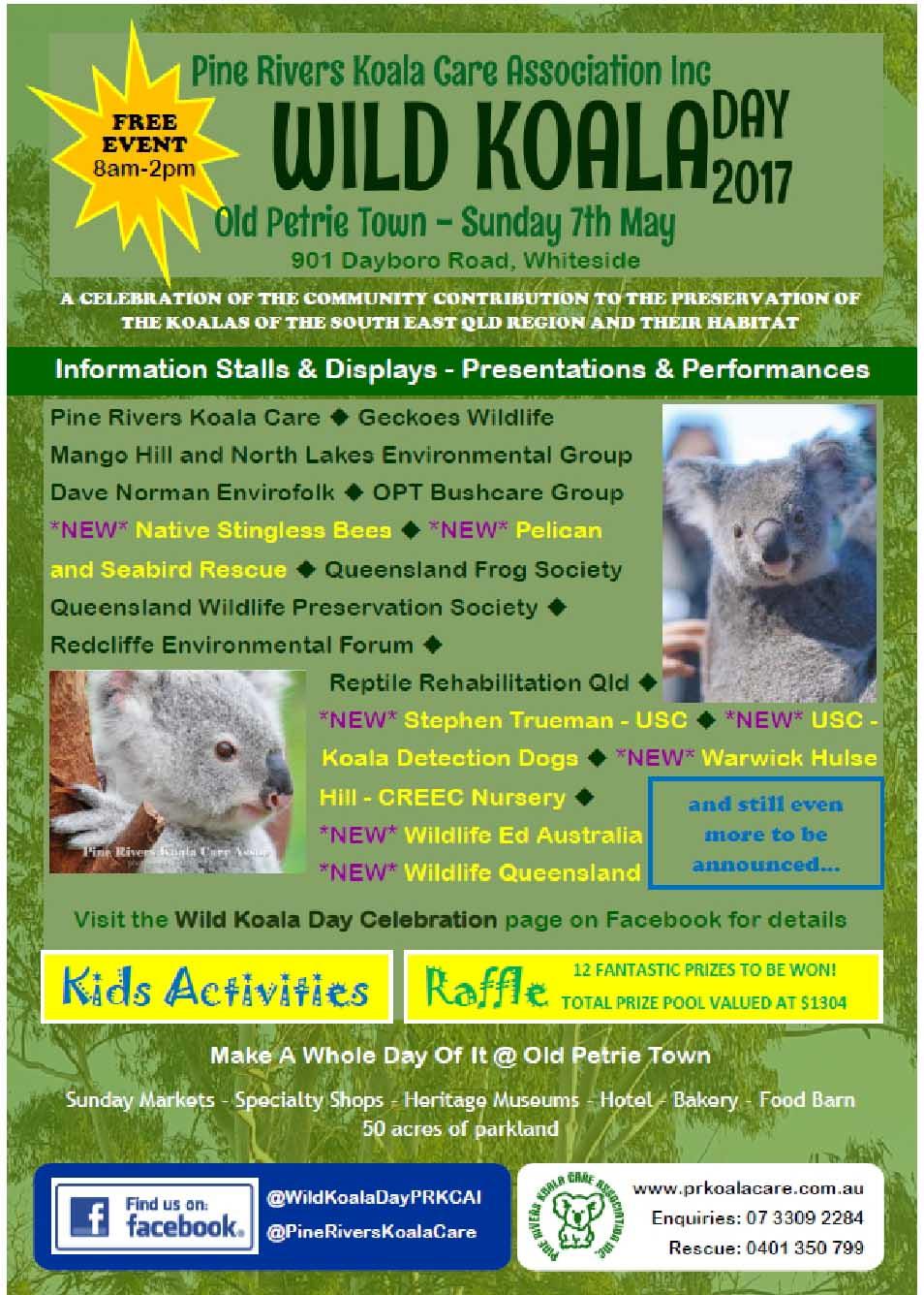 Wild Koala Day 2017 copy